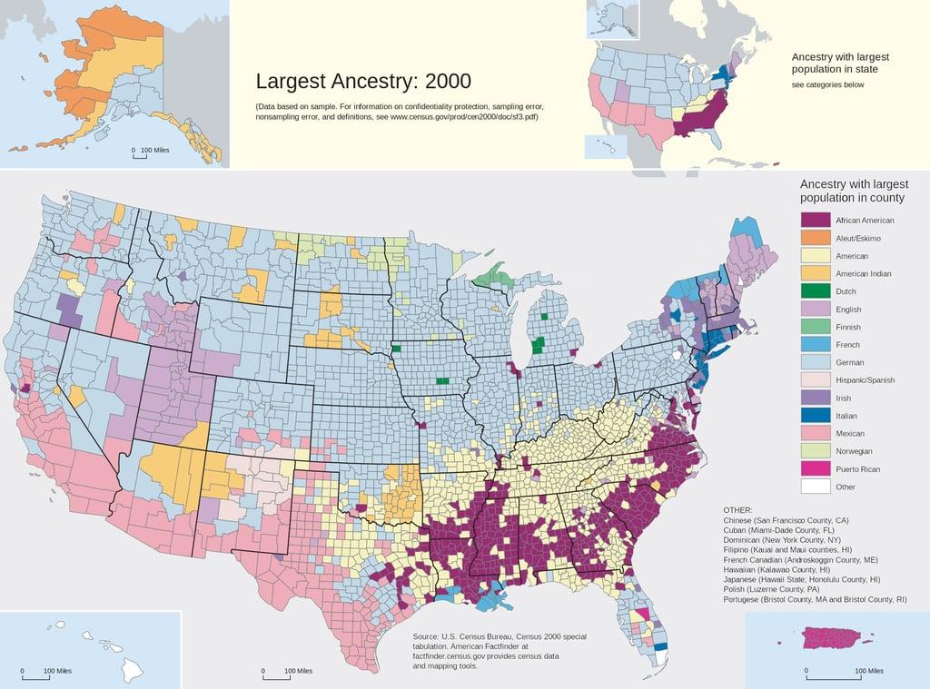 2000 Census Ancestry Data.jpg